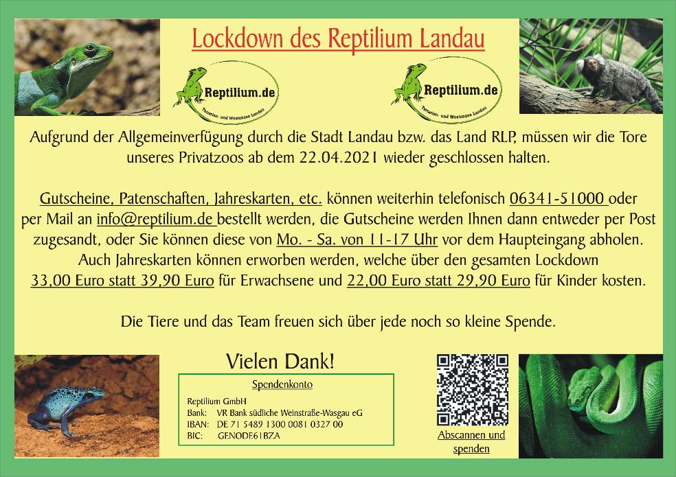 Banner Reptilium