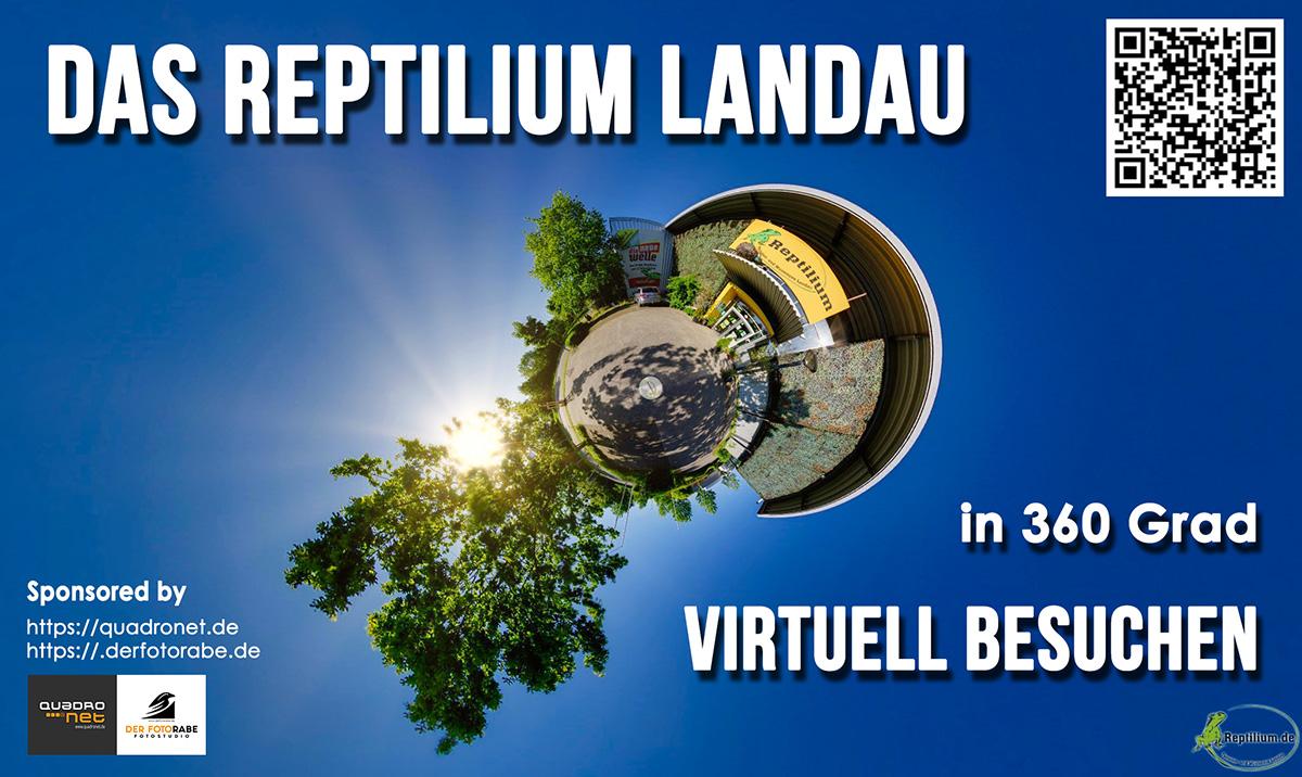 Reptilium Werbebild Kopie